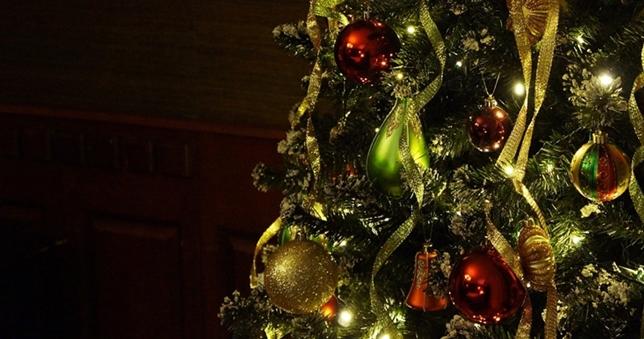 christmas-tree-708003_1920